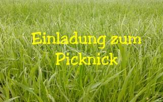 Berühmt Picknick Einladung Ideen - Bilder für das Lebenslauf ...